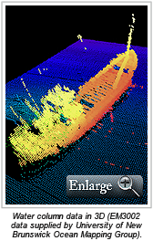 Water column data in 3D (EM3002 data supplied by University of New Brunswick Ocean Mapping Group).